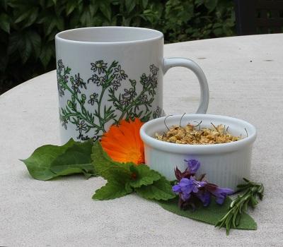 Tee- und Kräuteranwendungen